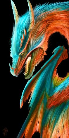 Rainbow dragon *A*