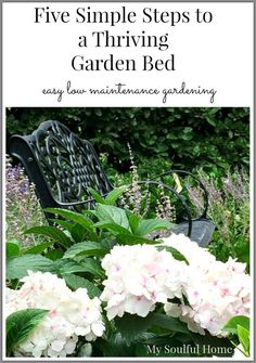 5 steps to a thriving garden bed