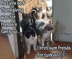 Thanksgiving is for friends and family