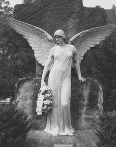 Angels Beyond the Grave... (Source: s-ilencieux, via in-virus)