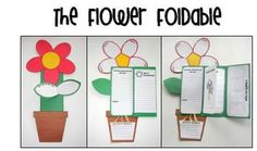 Great culminating project for your plant unit.  This would be perfect as a sunflower to tie in with the new CCSS Gr. 2 Seasons unit and Van Gogh's Sunflowers painting!