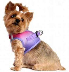 Raspberry Sundae Ombre Choke Free Dog Harness up to 3x-large