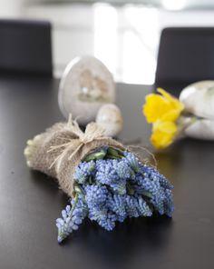 Pynt til påske med perleblomst (muscari) og påskelilje: https://www.mestergronn.no/pynt-til-paaske/cms/194
