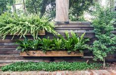 Fabulous DIY Vertical Garden Design Ideas Do you have a blank wall? the best way to that is to create a vertical garden wall inside your home. A vertical garden wall, also called a… Continue Reading → Jardin Vertical Diy, Vertical Garden Design, Vegetable Garden Design, Small Garden Design, Vertical Gardens, Vegetable Gardening, Small Backyard Gardens, Small Backyard Landscaping, Small Gardens