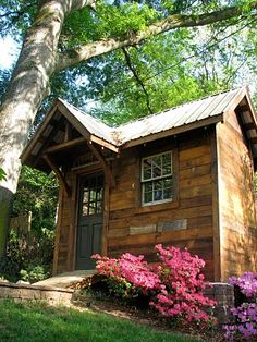 garden shed made from reclaimed materials. ~ with beautiful azaleas blooming.