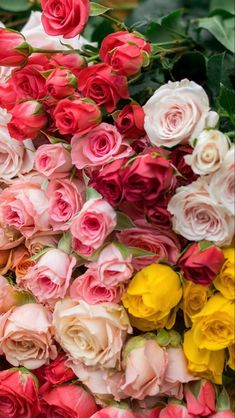 Cheap Flowers Near Me | Wholesale Flowers