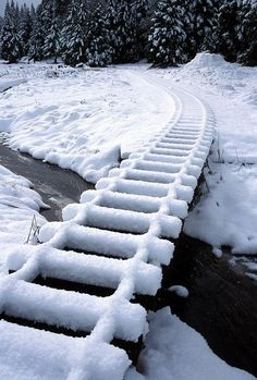 Snowy Tracks, California