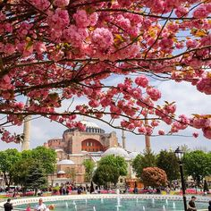 Istanbul, Turkiye Happy Friday / Mutlu Cumalar