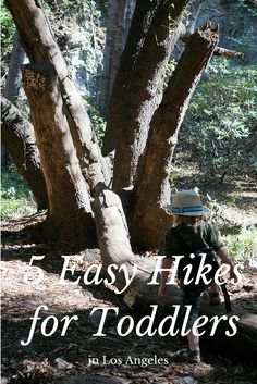 5 Easy Hikes for Toddlers in Los Angeles
