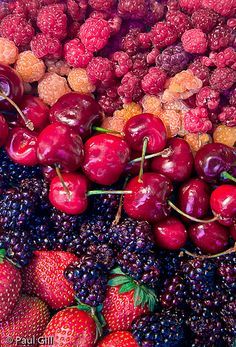 feeling a berry obsession..