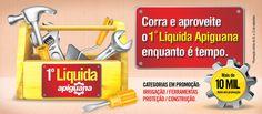 1º Liquida Apiguana