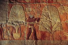 ✮ A relief of men carrying myrrh trees to Egyptian ships in Punt