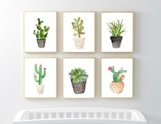 This set of 6 watercolor succulent prints for a nursery is now offered as a Digital Download. Itll be perfect for your little ones room or a preschoolers room. It wont be ones they will soon outgrow! Print off copies for your friends or your favorite preschool teacher too; theyll love them!  - This