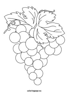 grapes-coloring-page