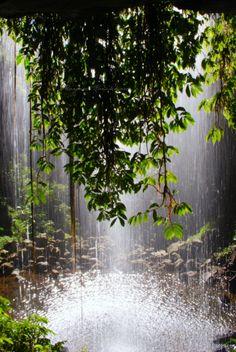 Crystal Shower Falls in Dorrigo National Park near Coffs Harbour Waterfall way NSW Australia