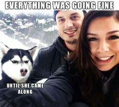 'Everything Was Fine......Until SHE Came Along'. Hahaha! Poor guy, I know just how he feels!