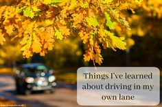 Things I've learned about driving in my own lane   [Free image via Pixabay]  I've avoided wordy posts for several weeks as I'm still painfully aware of my propensity to do great harm with the words I choose in haste. After that post of almost two months ago I've done a lot of soul searching and I've made some changes. The honest truth is anyone can bang out careless words in 5 minutes but well considered ones take time and I'm not great at that. Mea culpa. Some of these changes have been…