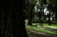 La Sabana está llena de puntos donde se dan asaltos y más