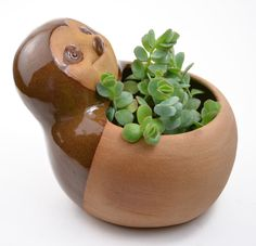 Planters are a fantastic way to infuse some fun in your everyday home decor. Cumbuca Chic has a wide selection of adorable ceramic animal planters that will hold your favorite succulents or cacti....