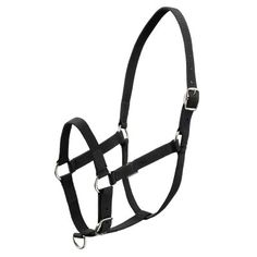 Halter and Lead Ropes Horse Riding - BLACK SCHOOLING HALTER FOUGANZA - Horse Health