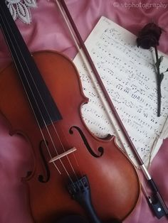 #vintage #violin #violinphotography #musicsheet #rose #bow #blush #pink #red #old #retro #music #lace #wallpaper ©vbphotography