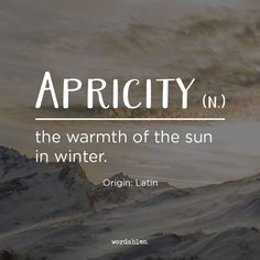 Oh the sun on a chilly Sunday morning #apricity
