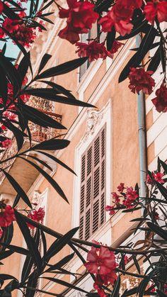 Drawing Wallpaper, Tumblr Wallpaper, Screen Wallpaper, Flower Wallpaper, Nature Wallpaper, Cool Wallpaper, Wallpaper Backgrounds, Aesthetic Pastel Wallpaper, Aesthetic Backgrounds