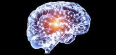 Vajon ez az intelligens pirula a legerősebb agyserkentő a világon? | Secret Brain