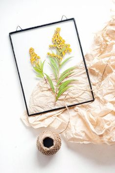Handmade glass framed herbariums with real dried yellow solidago flowers. You can hanged it on the wall, and it would became beautiful and unique part of