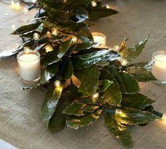 Luces y hojas