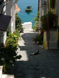 Kokkari, Samos, Greece - 2011