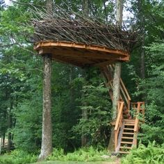 A freaking treehouse NEST!!!