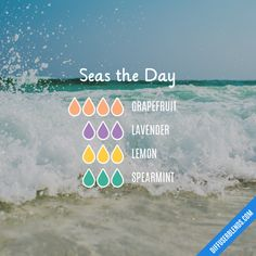 Seas the Day - Essential Oil Diffuser Blend