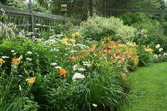 Aiken House & Gardens: Garden Abundance!