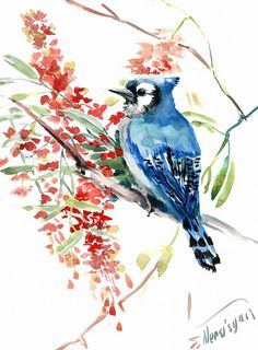 Blue Jay and Red Flowers Original watercolor by ORIGINALONLY, $44.00