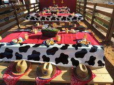"Photo 4 of 42: Farm/Barnyard / Birthday ""Barnyard Bash"" | Catch My Party"