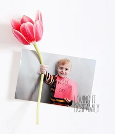 I saw this idea used as a Valentines card on Pinterest but it would be gorgeous for Mother's Day too. Simply take a photo of each student with a fist outstretched and after printing, cut a small slit in the image above and below the hand. Insert a flower (or lollipop) and you've got a gorgeous, personalized card that all mums will love!