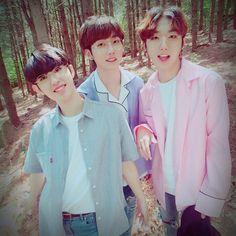 M.O.N.T under FM Entertainment, from l>r Bitsaeon(Kim Sangyeon), Roda(Shin Jungmin) & Narachan(Jung Hyungwoo) Rapper, Fandom, Kpop Groups, K Idols, Survival, Ruffle Blouse, Entertainment, Beauty, Mint