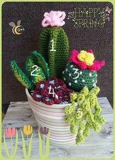 Vorige week plaatste ik deze foto van een mooie verzameling gehaakte cactussen en vetplantjes die ik onlangs heb gehaakt om cadeau te geven. Er was veel vraag naar een patroon dus ben ik beg