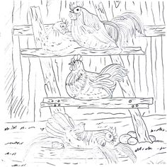 Chickens Roosting On The Farm Country Living Coloring Book Printable Page