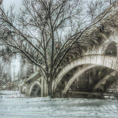 Of winter's lifeless world each tree Now seems a perfect part; Yet each one holds summer's secret Deep down within its heart. Charles G. Stater Centre Street Bridge Calgary Alberta.  #dailyhiveyyc #yyc #ig_great_shots_canada #canada_pic #yyc_now #pocket_canada #pocket_bnw #bridges_of_our_world #be_one_bridges #tv_bridges #ig_photostars #ig_today #ig_divineshots #ig_great_shots #jj_blackwhite #igworldclub #ig_myshot