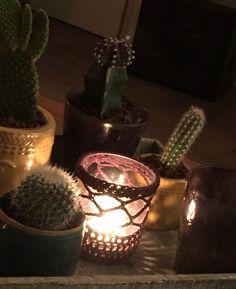 Gehaakt potje mexicaanse styl met cactus plantjes