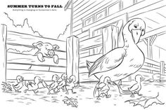 Charlotte's Web   Coloring Pages   Pinterest   Charlottes ...