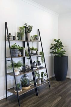 How to Create an Indoor Vertical Garden On-the-Cheap How to Create an Indoor Vertical Garden On-the-Cheap,H.E kmart industrial ladder shelf indoor vertical garden ideas Related posts:TriBeCa Trio Topf Regal / hängende Regale / Pflanzer. Interior Design Inspiration, Home Decor Inspiration, Design Ideas, Interior Ideas, Home Decor Ideas, Decorating Ideas, Decorating Websites, Living Room Inspiration, Interior Styling