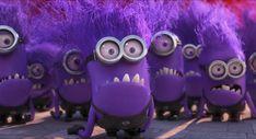 How do the purple minions look? Do they wear the blue overalls like yellow minions? Do they speak the minions language? Gif Minion, Despicable Me Costume, Minion Humour, Minion Rush, Minion Dave, Despicable Me 2 Minions, Minion Costumes, Evil Minions, Funny Minion