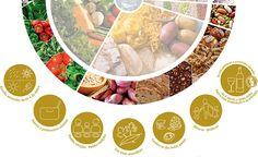 Portugueses criam Roda da Alimentação Mediterrânea - http://bodyscience.pt/blog/portugueses-criam-roda-da-alimentacao-mediterranea/