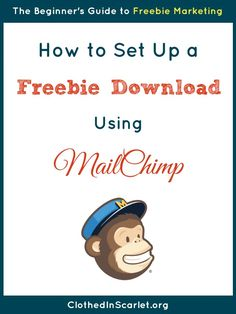A step by step tutorial on how to set up a subscriber freebie using MailChimp.