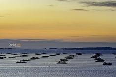 Vista a las bateas de la Ria de Arousa desde la playa de Las Pipas en O Grove, Pontevedra, Galicia, España