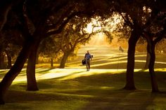 The Golfer by Jimmy Williams   # Pinterest++ for iPad #