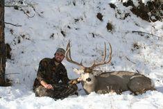 Remi Warren's Ten Tips for Hunting Mule Deer